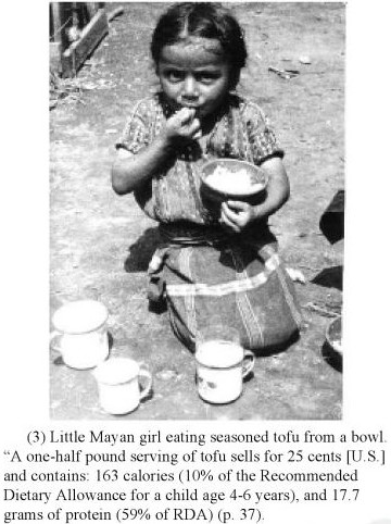 History of Soymilk part 1: Guatemala