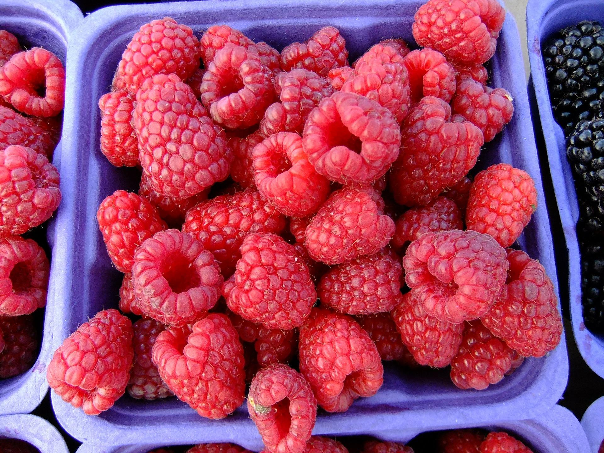 raspberries-65650_1920