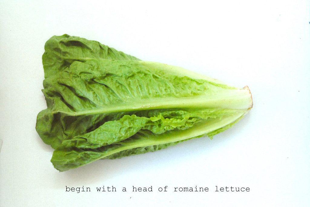 vegan-caesar-romaine-lettuce-1024x685